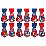 Set of 12 Tie Shaped Monthly Stickers Photo Props Keepsakes for Baby Boys with New England Patriots Football by Heads Up Girls