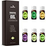 Aromatherapy Essential Oils Kits - DEBORO (2018 New Design) 100% Pure & Organic Therapeutic Grade Gift Sets Diffuser Oil for Massage, Relax including TOP6 Lavender/Peppermint/Tea Tree/Sweet Orange/Eucalyptus/Lemongrass