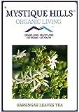 Mystique Hills Harsingar Leaves Herbal Tea (Premium Quality) Parijat (100 g)