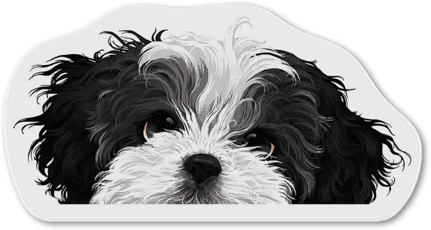 WIRESTER Fridge Magnet Decoration for Kitchen Refrigerator, Black White Shih Tzu Dog