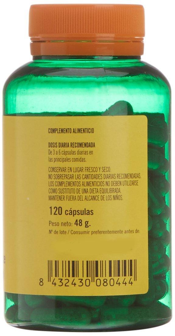 TERRA VERDA - H.S.C. (Harpagofito+Sauce+Cola De Caballo) 120Cap: Amazon.es: Salud y cuidado personal