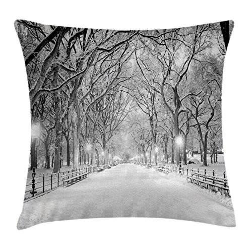 Ambesonne Winter Decor Throw Pillow Cushion Cover, View of Central Park in Winter Snowy Trees and the Walkway Digital Print, Decorative Square Accent Pillow Case, 16 X 16 Inches, Black and White (Tree Walkway)