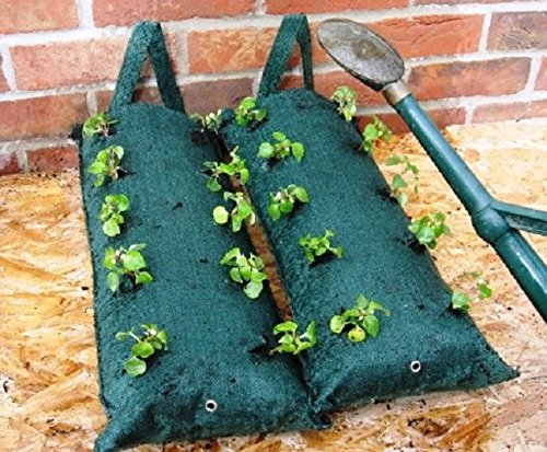Tomato Herb Flower Strawberry Growing Bags 2 x Jute Fabric Hanging Planter Grow Bag Plant Pouch