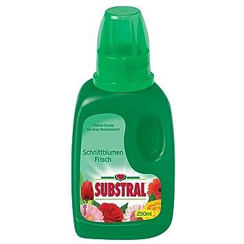 Substral Schnittblumen-frisch - 250 Ml: Amazon.de: Garten Schnittblumen Frische Strause Garten