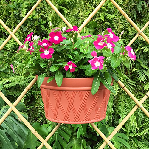 Mr. Garden Resin Plastic Wall Hanging planter Vertical Garden Plant Pot, 12x6.9x8.6Inch, Brick Red, 3Pack