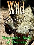 Wild Venezuela - Venezuelan Birds of Diversity