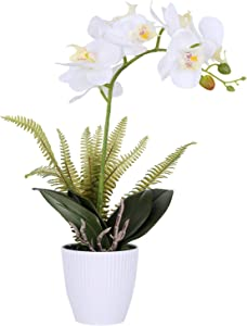 LIVILAN Artificial Orchid Flowers Silk Orchids Plants for Home Decor White Orchid Artificial Flowers Faux Orchid in vase Faux Flowers Decor Indoor Office Bathroom Home Decor