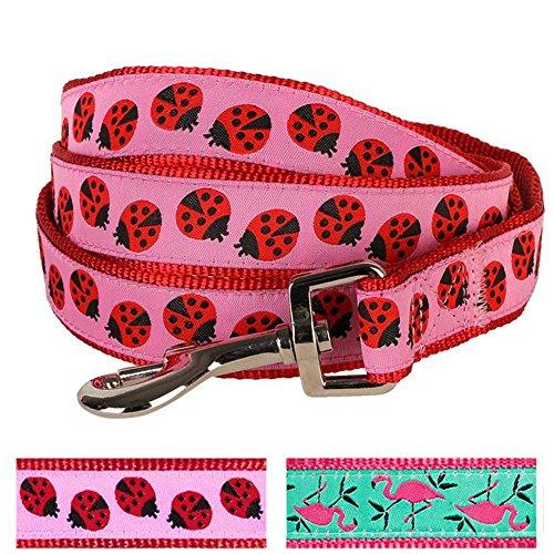 Blueberry Pet Durable Pink Webbing Ladybug Designer Dog Leash 5 ft x 5/8