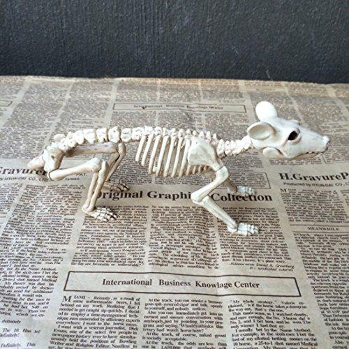 Bones Plastic - Good Skeleton Rat 100 Plastic Animal Bones Decoration - Plastic Bones Animal Miniatures Halloween Party Decorations Scary Hand Halloween Indian Shirt Doopro Plastic Skeleton -