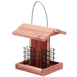 Homes Garden Suet Wild Bird Feeder USA Cedar Wood Double Suet Holder Outdoor Woodpecker Hummingbird Sparrow Products #G-8471