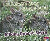 La historia de un conejo bebé/A Baby Rabbit Story (Animales bebé/Baby Animals) (Multilingual Edition)