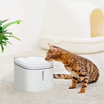 Amazon.com: FXQIN - Fuente de agua automática para mascotas ...