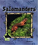 Salamanders, Julie Murray, 1591973341