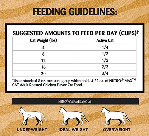 Nutro Max Cat Adult Roasted Chicken Flavor Dry Cat Food (1)16 Pounds; Rich In Nutrients And Full Of Flavor; Supports Healthy Joints & Healthy Skin And Coat 6