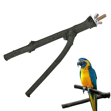 Feli546Bruce Accesorios para pájaros, Bonito Soporte para ...