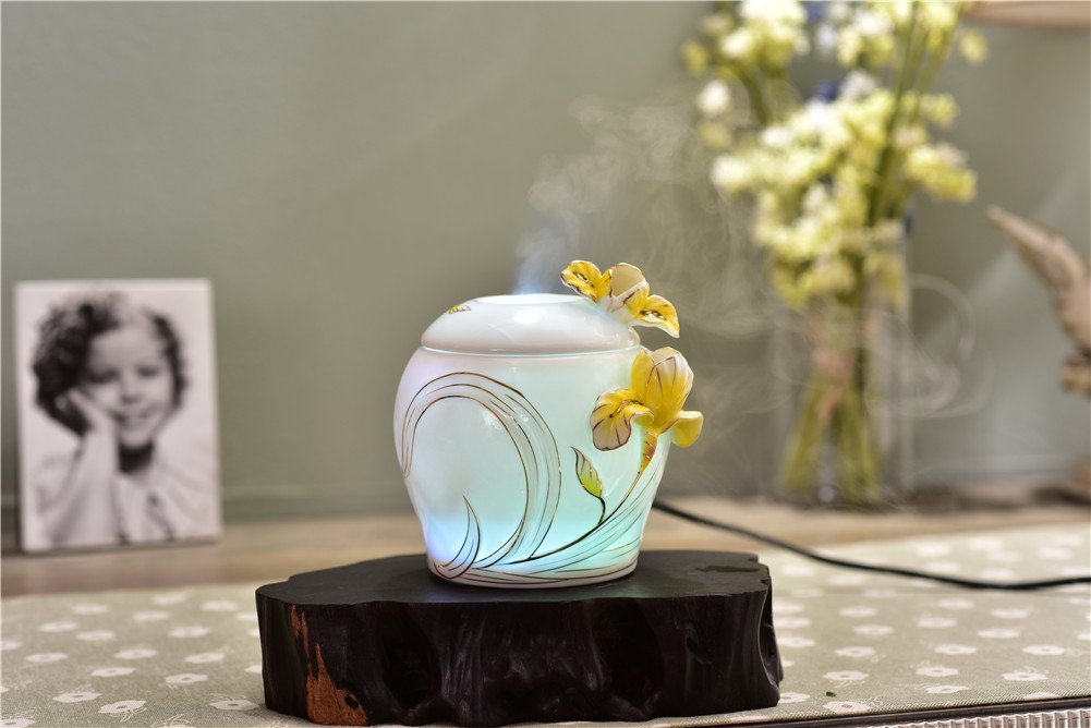 Deerbird Ceramics Humidifier 250ml Iris Flowers Ultrasonic Soothing Mist With 7 Color Changable,Essential Oil Air Diffuser Night Light for Salon SPA Office by DeerBird