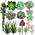 Aris Flora Fake Succulent Plants – 15 Pcs Artificial Faux Decorative Cactus Flowers –Ultra-Realistic Design – Premium Quality Plastic – Mess-Free & Easy Maintenance –Original Gift Idea