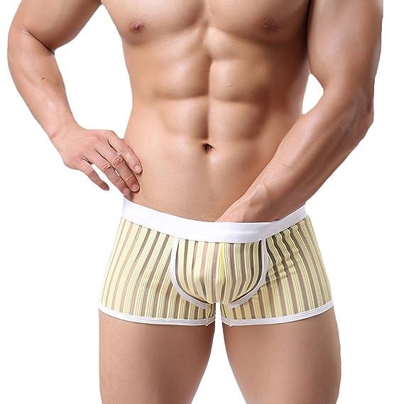 Tenchif Transparente Ver a través de Pantalones cortos para hombres Boxer Briefs Ropa interior: Amazon.es: Ropa y accesorios