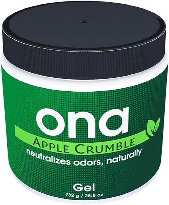 The Best Ona Apple Crumble
