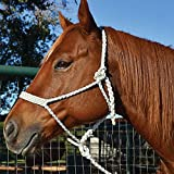 Martin Saddlery Mule Tape Braided Horse Halter with Lead Wide Nose