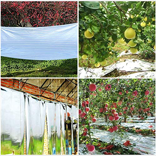 Alotm Garden Greenhouse Plant Reflective Film Cover Solar Transmitting for Plant 120Cm 210Cm Grow Film Garden Accessories, Highly Reflective, Effectively Increase Plant Growth, 100% Environmentall by Alotm (Image #5)