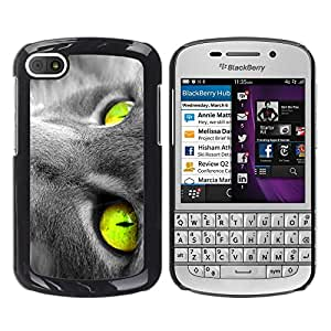 Vortex Accessory Hard Protective Case Skin Cover For Blackberry Q10 - Vibrant Green Grey Cat Russian Blue
