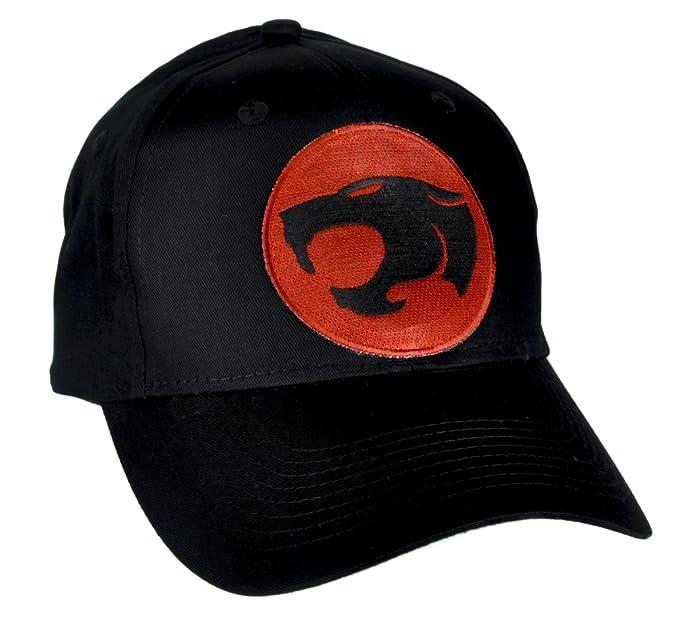 a51b61a4531 Amazon.com  ThunderCats Hat Baseball Cap Alternative Clothing  Clothing