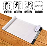 Ipetdog Indoor Electronic Pets Training Mat For Dogs And