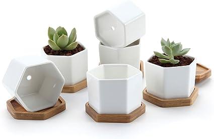 T4U 7CM Keramik Sukkulenten T/öpfe Kaktus Pflanze T/öpfe Mini Blument/öpfe mit Bambusuntersetzer Trommel Frome Wei/ß 6er Set