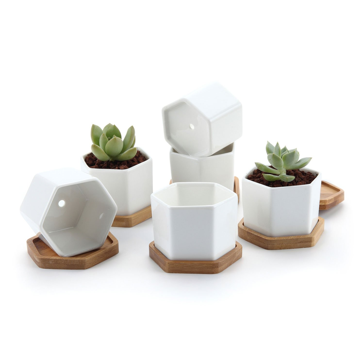 T4U 2.75'' White Ceramic Hexagon Succulent Cactus Planter Pots with FREE Bamboo Tray for Home Decoration 1 Pack of 6