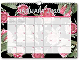 Orange Circle Studio 2020 Deluxe Wall Calendar, Floral Expressions