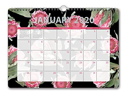 Decorative February 2020 Calendar For Message Boards Amazon.: Orange Circle Studio 2020 Deluxe Wall Calendar
