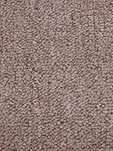 6u0027x8u0027   Sage Brush   Indoor/Outdoor Area Rug Carpet, Runners U0026 Stair Treads  With A Premium Nylon Fabric FINISHED EDGES.