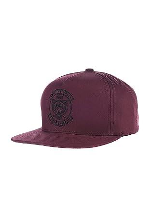 9db05234760 Vans Off The Wall Men s Chima Ferguson II Snapback Hat Cap - Port ...