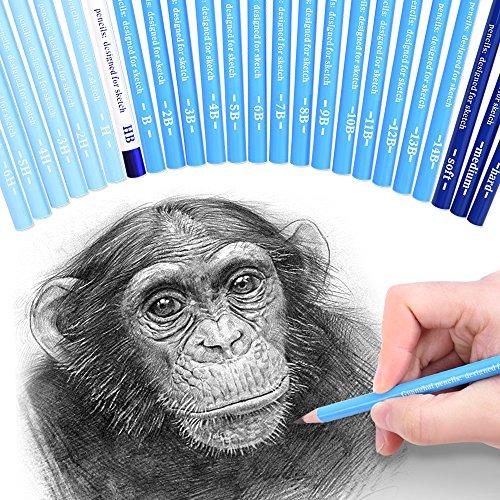24 Sketch Pencils - Professional Art Sketching Pencils Travel Set Artists Drawing Kit Graphite Charcoal Pencils for Painting, Sketching, Drawing, Shading