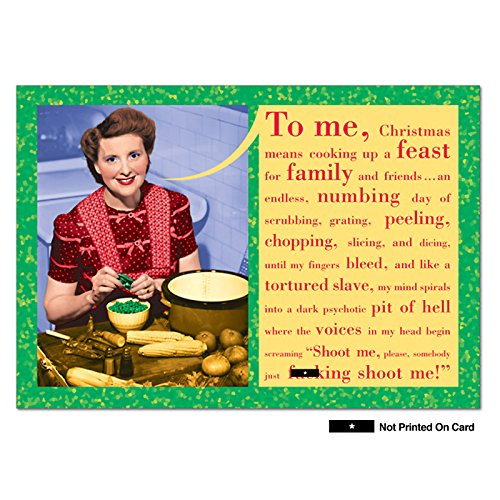 NobleWorks Somebody Shoot Me Hilariousous Greeting Cards with Envelope, 1 Christmas Card & Envelope