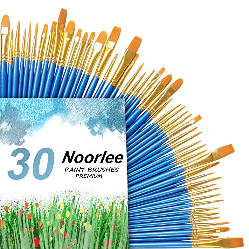 Noorlee 3 Pack Paint Brush Set, 30 pcs Nylon Hair Brushes for Acrylic Oil Watercolor Painting Artist Professional Painting Kits ()