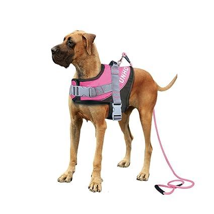 61R9 jovjUL._SX425_ amazon com losy pet heavy duty no pull dog harness, strong enough