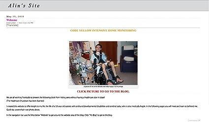 Amazon.com: Alins Blog: Alin Steglinski: Kindle Store