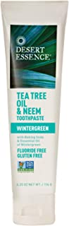 product image for Desert Essence Tea Tree Oil & Neem Toothpaste - 6.25 Oz - Refreshing Rich Taste - Baking Soda & Essential Oil of Wintergreen - Antiseptic - All Natural Ingredients - Fluoride & Gluten Free
