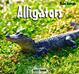Alligators, Alice Twine, 1404241469
