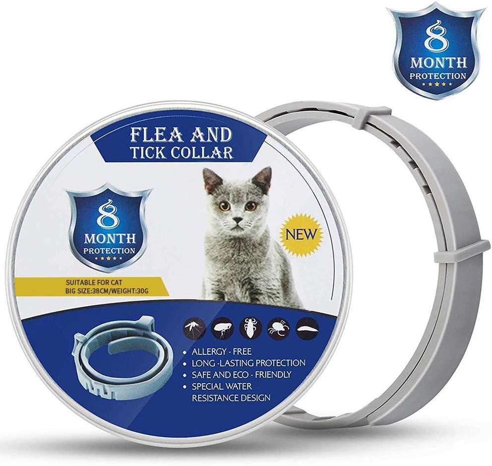 Zwini Collar Anti Pulgas y Garrapatas para Perros y Gatos, Prevención por 8 Meses de Pulgas y Garrapatas, Fórmula Natural, Ajustable y Resistente al Agua(38 cm): Amazon.es: Productos para mascotas