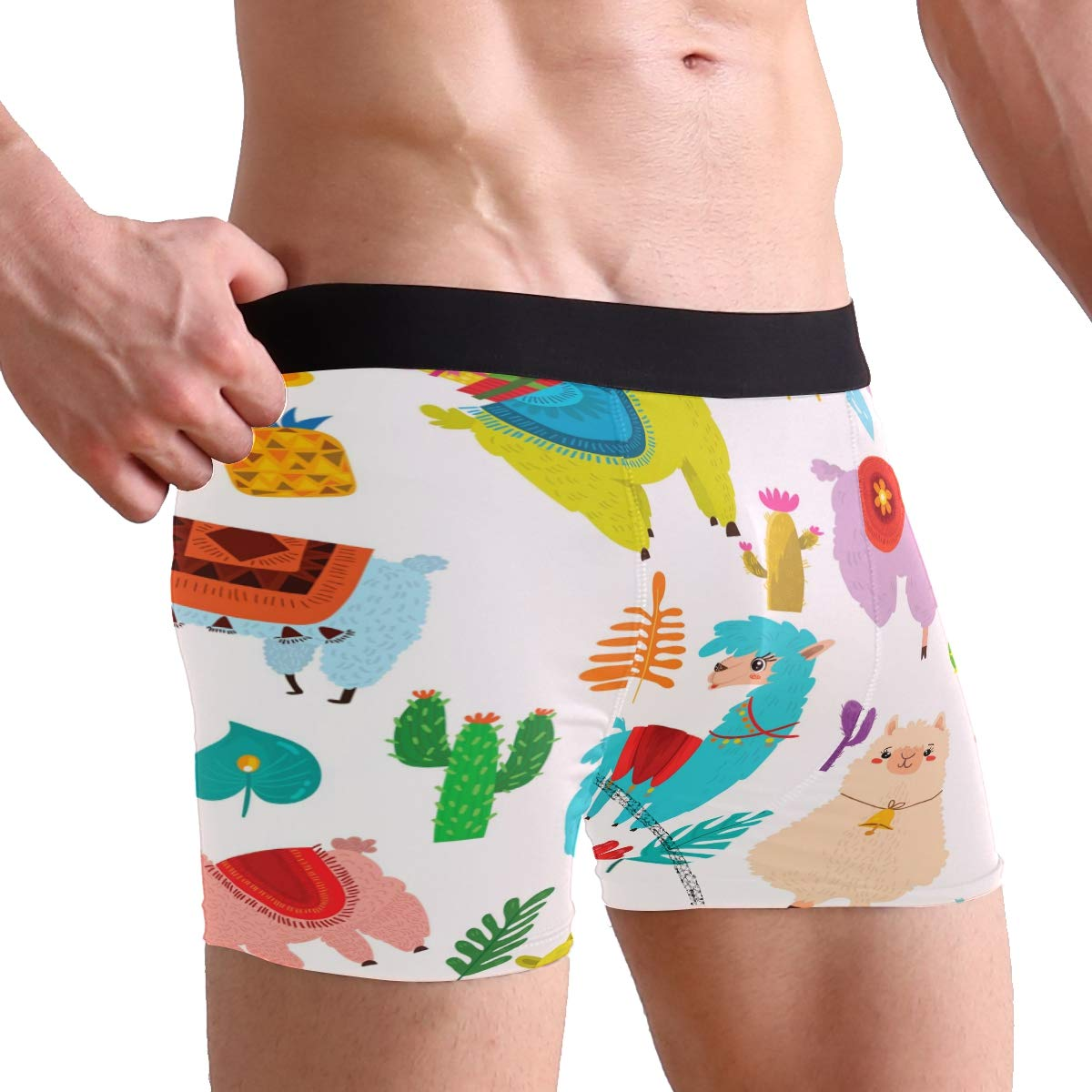 SUABO Mens 2-Pack Boxer Briefs Polyester Underwear Trunk Underwear with Alpaca Painting Design