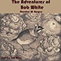 The Adventures of Bob White Audiobook by Thornton W. Burgess Narrated by Tom S. Weiss