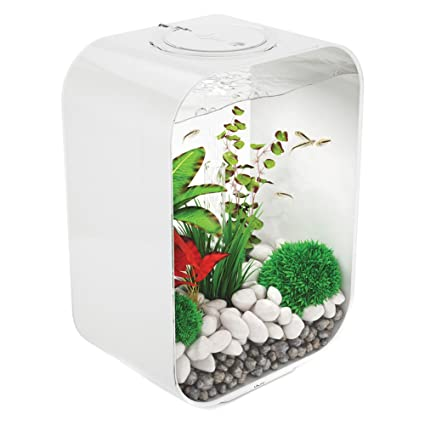 biOrb LIFE 15 Aquarium with LED Light u2013 4 Gallon White  sc 1 st  Amazon.com & Amazon.com : biOrb LIFE 15 Aquarium with LED Light - 4 Gallon White ...