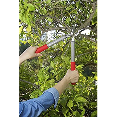 Corona BP 3225D Two-Handed Pruner, 3/4-Inch Capacity : Hand Pruners : Garden & Outdoor