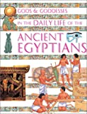 In the Daily Life of the Ancient Egyptians, Henrietta McCall, 0872266354