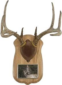 Amazon.com: Walnut Hollow Country Deluxe Antler Display ...