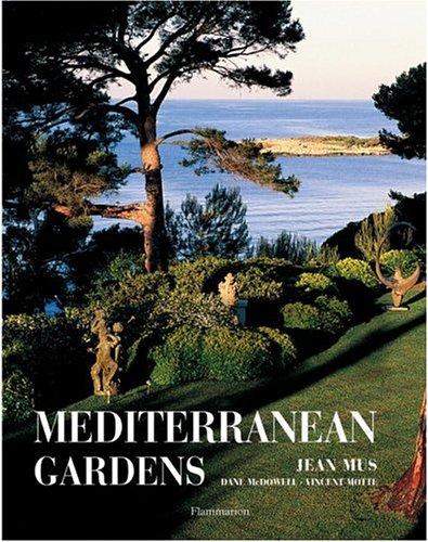 Mediterranean Garden - 3