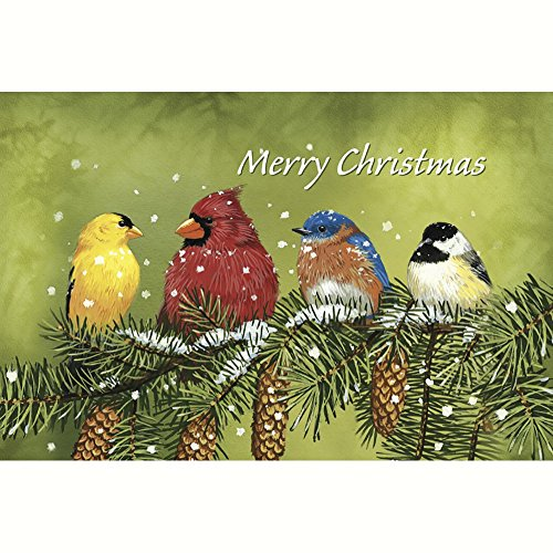 Tree-Free Greetings Christmas Cards and Envelopes, Set of 10, 5